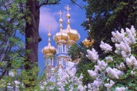 Индивидуальная экскурсия в Пушкин (Царское Село)